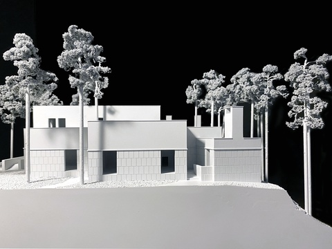Hillside house. Model 11
