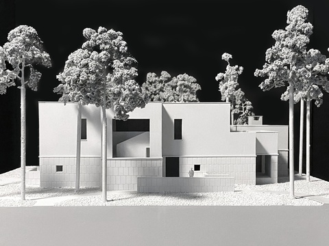 Hillside house. Model 01