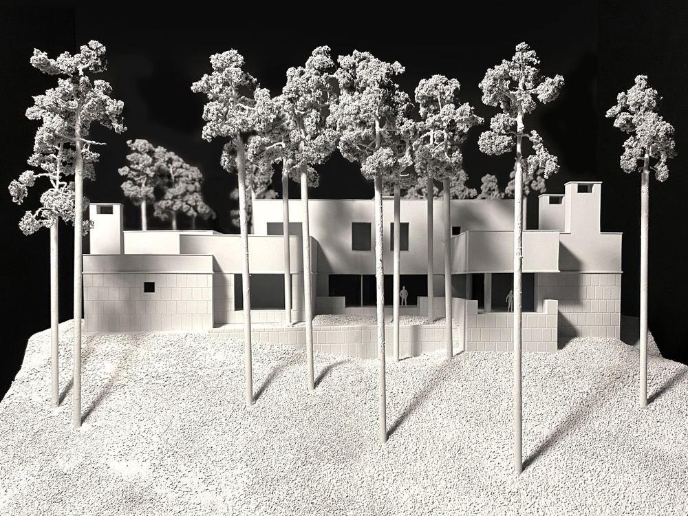Hillside house. Model